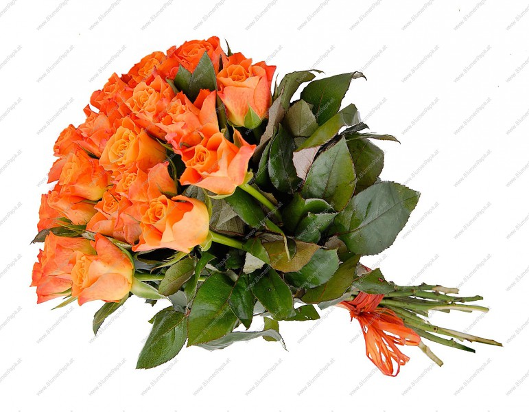 blumenstrau rosenpracht orange kategorie rosen specials blumenpapa. Black Bedroom Furniture Sets. Home Design Ideas